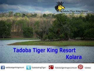 Tadoba Tiger King Resort and Services