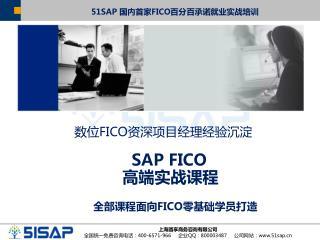 SAP FICO  高端实战课程