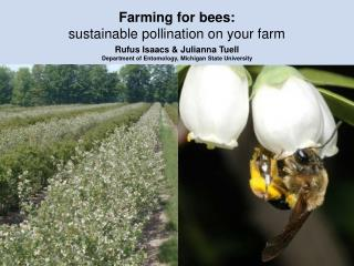 Farming for bees:  sustainable pollination on your farm