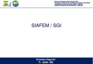 SIAFEM / SGI