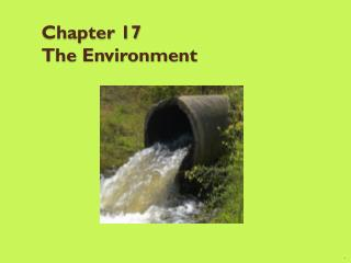 Chapter 17 The Environment