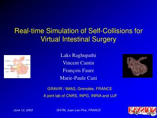 Real-time Simulation of Self-Collisions for Virtual Intestinal Surgery