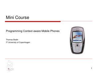 Mini Course