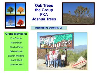 Oak Trees the Group FKA Joshua Trees