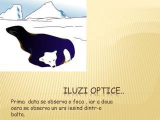Iluzi  optice..