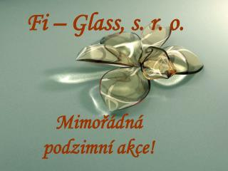 Fi – Glass, s. r. o.