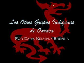 Los Otros Grupos Indigenas de Oaxaca