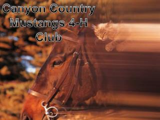Canyon Country Mustangs 4-H Club