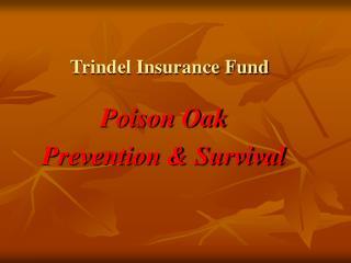 Trindel Insurance Fund