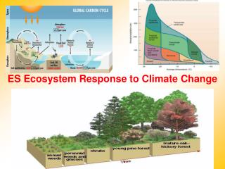ES Ecosystem Response to Climate Change