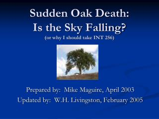 Sudden Oak Death: Is the Sky Falling? (or why I should take INT 256)