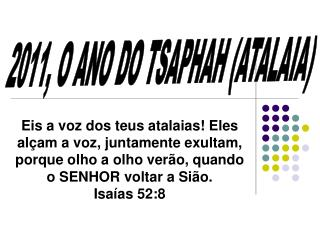 2011, O ANO DO TSAPHAH (ATALAIA)