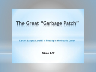 The Great  Garbage Patch