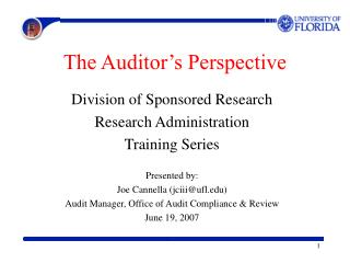 The Auditor's Perspective
