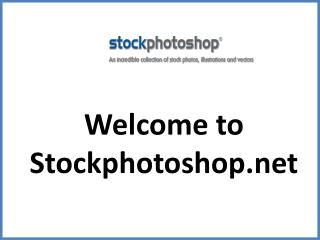 Find the Best Stock Images at Affordable Price