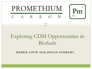 Exploring CDM Opportunities in Biofuels