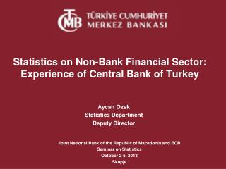 Statistics on Non-Bank Financial Sector: Experience of Central Bank of Turkey