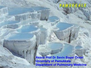 Assos Prof Dr  Sevin Başer Öncel University of  Pamukkale  Department of Pulmonary Medicine