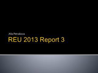 REU 2013 Report 3