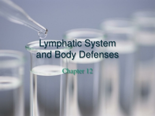 Chapter 12 The Lymphatic System  and Body Defenses