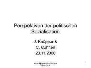 Perspektiven der politischen Sozialisation