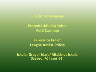 Cím: Az ökolábnyom Prezentációt készítette:  Pető Zsombor Felkészítő tanár: Lángné Juhász Szilvia