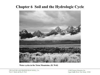 Chapter 6   Soil and the Hydrologic Cycle