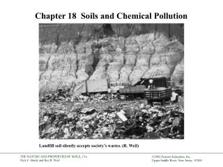 Chapter 18   Soils and Chemical Pollution