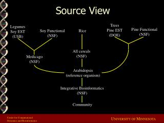 Source View