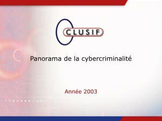 Panorama de la cybercriminalité