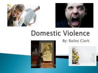 D omestic Violence