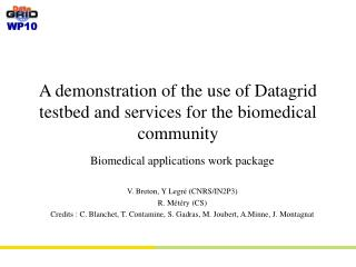 A demonstration of the use of Datagrid testbed and services for the biomedical community