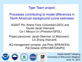 Tiger Team project :