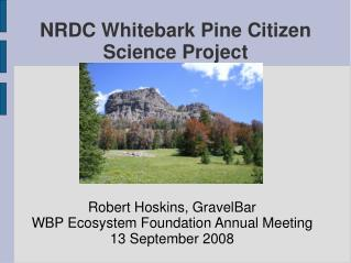 NRDC Whitebark Pine Citizen Science Project