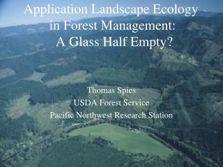Application Landscape Ecology  in Forest Management:   A Glass Half Empty?
