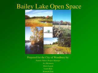Bailey Lake Open Space