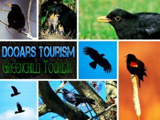 Dooars tourism