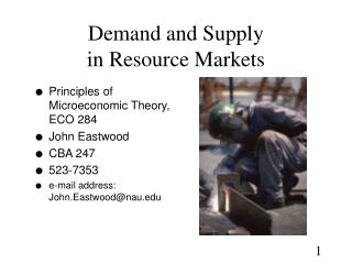 Demand and Supply  in Resource Markets