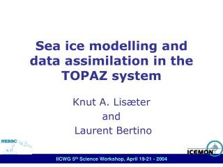 Sea ice modelling and data assimilation in the TOPAZ system