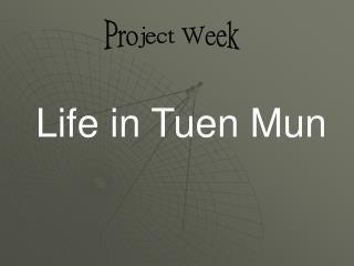Project Week