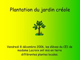 Plantation du jardin créole