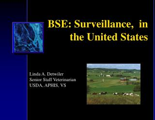 BSE: Surveillance,  in the United States