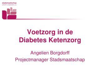 Voetzorg in de  Diabetes Ketenzorg