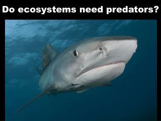 Do ecosystems need predators?