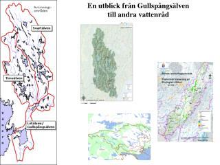 En utblick från Gullspångsälven  till andra vattenråd
