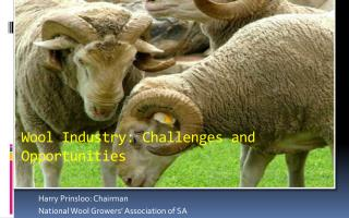 Wool Industry: Challenges and Opportunities