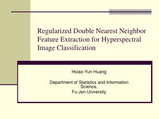 Regularized Double Nearest Neighbor Feature Extraction for Hyperspectral Image Classification