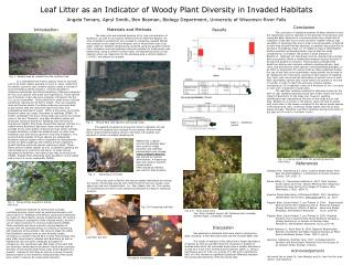Leaf Litter as an Indicator of Woody Plant Diversity in Invaded Habitats