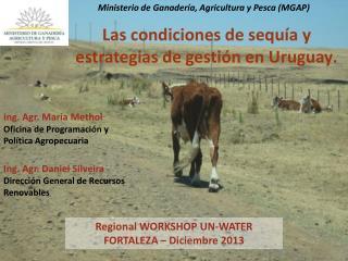 Regional WORKSHOP UN-WATER FORTALEZA – Diciembre 2013