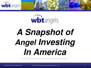 A Snapshot of  Angel  Investing In America
